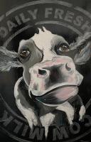 Daily Fresh Cow Milk
